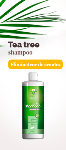 Shampoo Tea tree gale de boue
