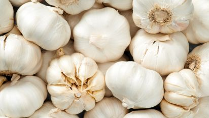 7 things you need to know before giving garlic to your horse